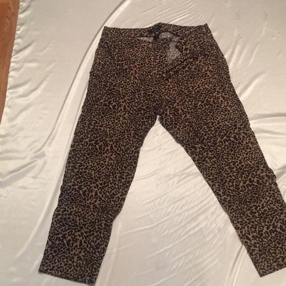 f7a3804586c Ashley Stewart Denim - Plus size leopard print jeans size 18
